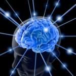 Le mystère des couleurs : Notre cerveau fabrique sa réalité